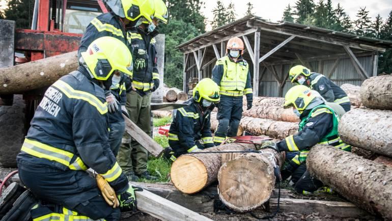 LG 3: THL Land- und Forstwirtschaft