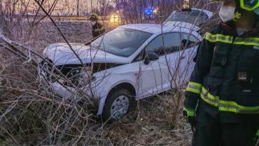 Fahrzeuglenkerin und Hund gerettet